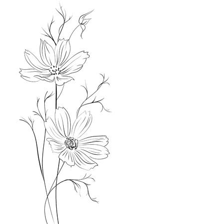 buttercup  decorative: Buttercup flower Illustration