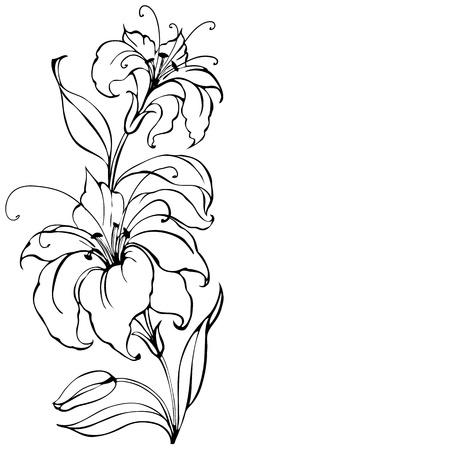lily flower: Lelie bloem Stock Illustratie