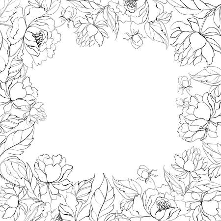 petal: Frame of Peony