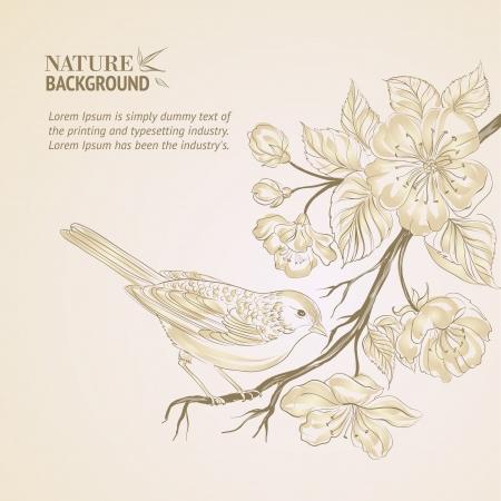 canvas on wall: Hand drawn bird on Sakura branch