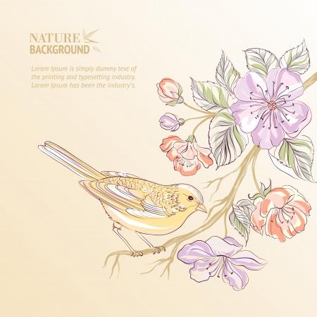 birds in tree: Cute watercolor bird