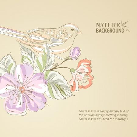 Hand drawn bird on Sakura branch 向量圖像
