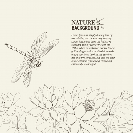 floating on water: Lotus flower and dragonfly Illustration