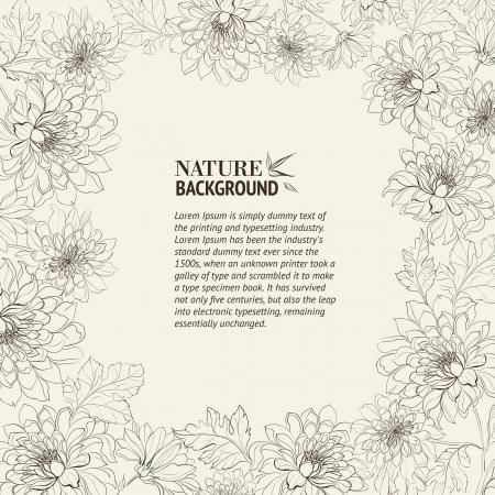 rame of chrysanthemum  Vector illustration