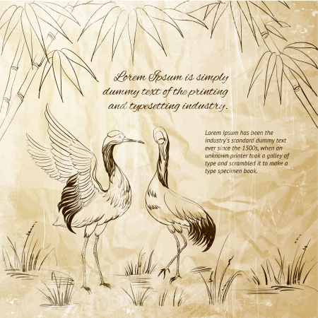crane fly: Wallpaper heron and bamboo  Vector illustration  Illustration