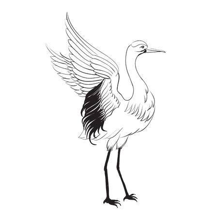 Heron isoliert über weiß Vektor-Illustration