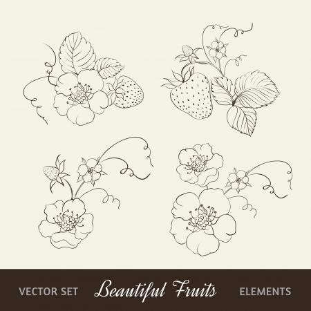 strew: Strawberry elements isolated on white background  Illustration