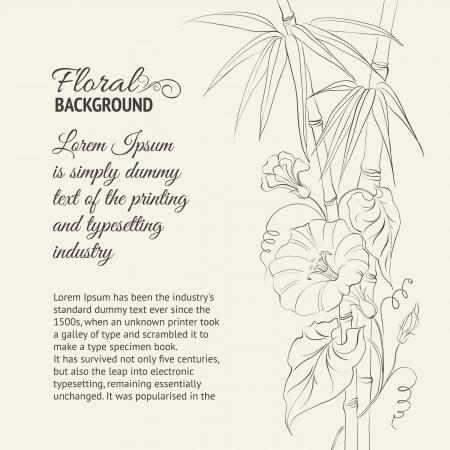 bindweed: Bindweed flower and bamboo isolated on sepia illustration  Illustration