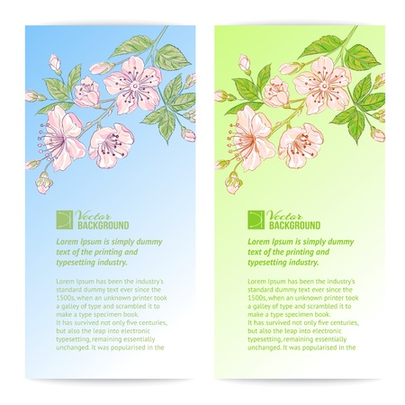 Two sakura banners illustration  Vector