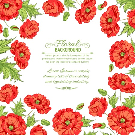 red poppy: Frame with wreath of poppies isolated on white illustration