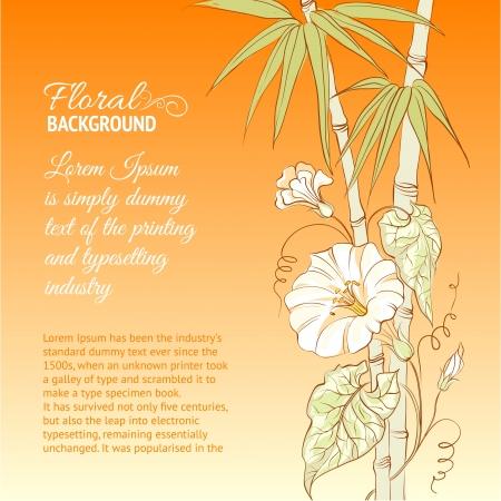 bindweed: Bindweed flower and bamboo on orange background illustration  Illustration