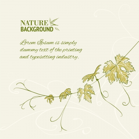 branch to grow up: Branch of vine leaves illustration