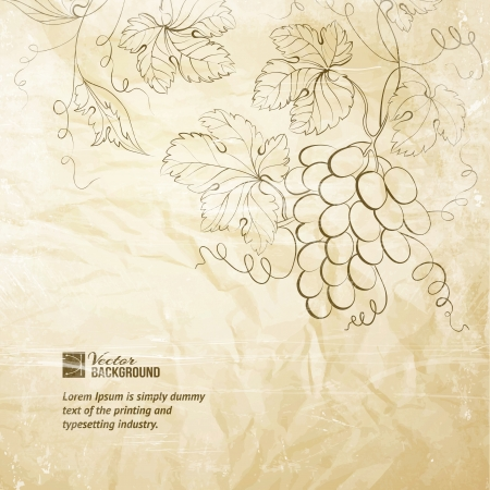 wine card: Brown wrinkled paper with grapes illustration  Illustration
