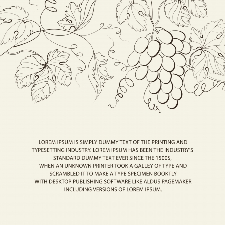 the land of menu: Engraving of grapes branch illustration