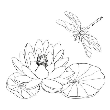 Waterlelie en dragonfly geïsoleerd over wit illustratie