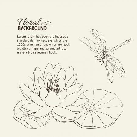 lirio acuatico: Nenúfar y dragonfly ilustración sepia