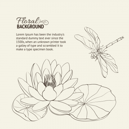 pond water: Water Lily and dragonfly sepia illustration
