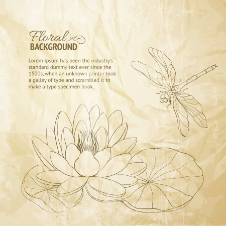 Water Lily and dragonfly old paper illustration Banco de Imagens - 20235892