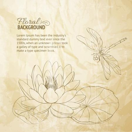 Waterlelie en dragonfly oud papier illustratie
