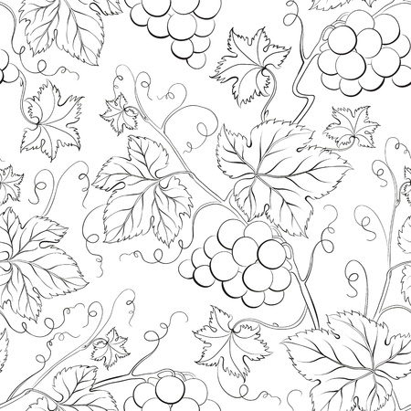 Grape Seamless Pattern illustration  Vector