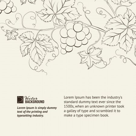 grapes wine: Wine list label illustration