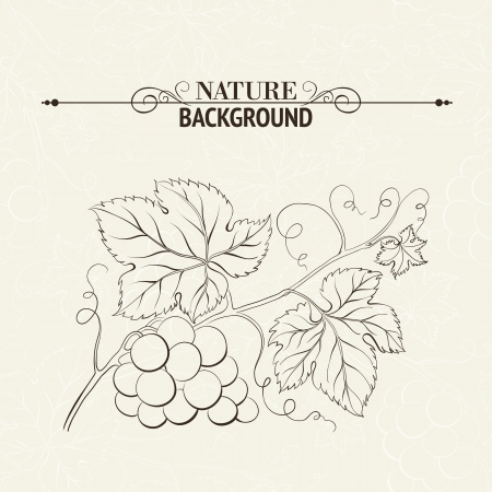 Green wine leaves over sepia background illustration