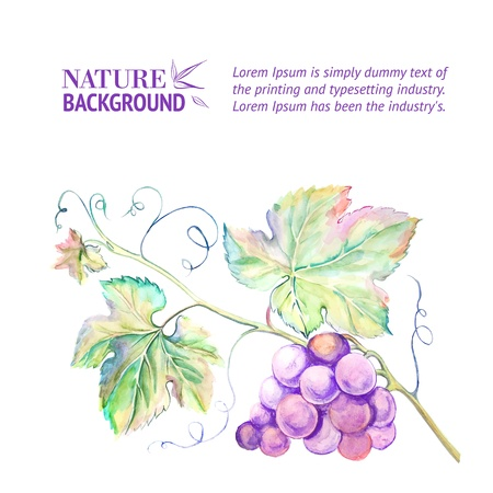 Painted watercolor card with grape leaves illustration
