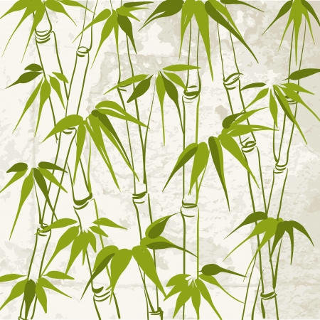 Bamboo with leaves pattern  Vector illustration  向量圖像