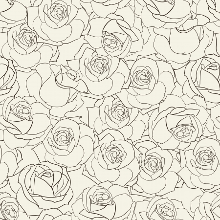 white rose: Rose seamless background  Vector illustration  Illustration