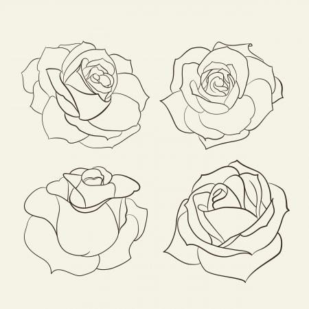 Set of roses  Vector illustration