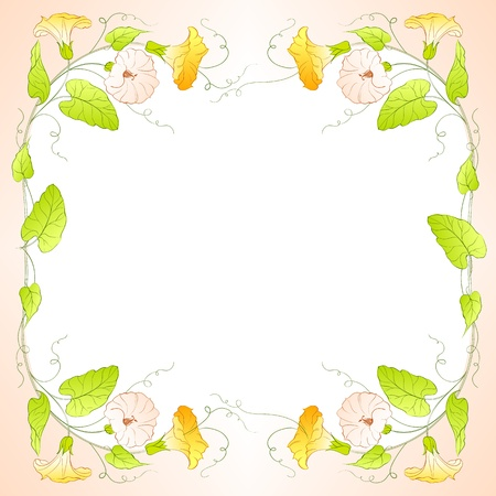 painted the cover illustration: Flowers Frame of bindweed  Vector illustration