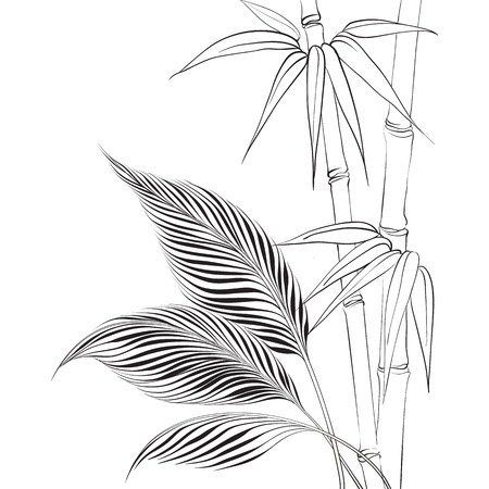 bamboo forest: Palm tree over bamboo forest  Vector illustration
