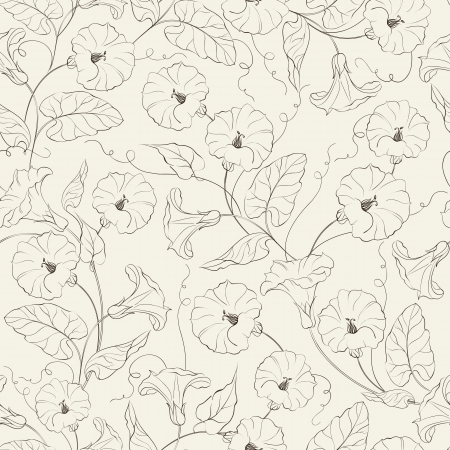 convolvulus: Bindweed flower seamless pattern  Vector illustration
