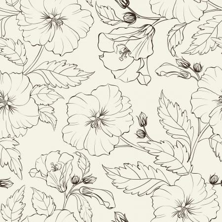 Hibiscuses background  Vector illustration