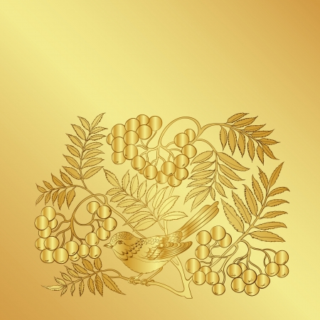 ash: Wild ash branch isolated on a gold background. Vector illustration. Illustration