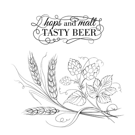 malt: Golden wheat and hop on sepia. Vector illustration. Illustration
