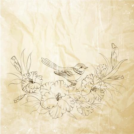 Bird sitting on iris flower. Vector illustration. Illustration