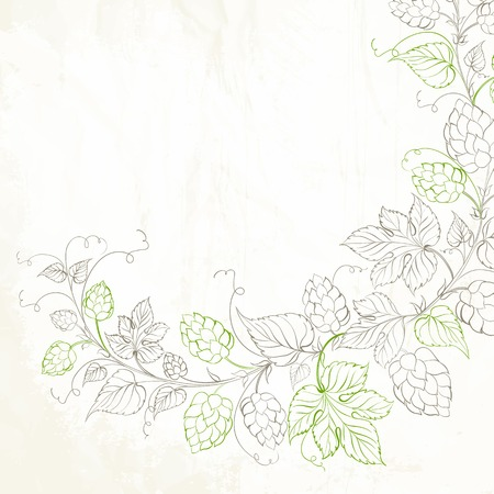 Vintage silhouette hop and leafs. Vector illustration. Vector