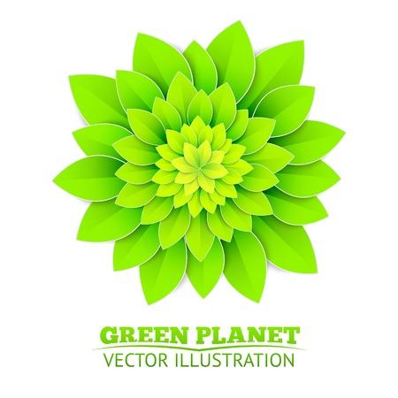 Background with green flower. Vector illustration. Illustration