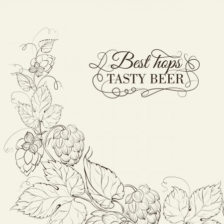 barley hop: Decorative hops cover design. Vector illustration. Illustration