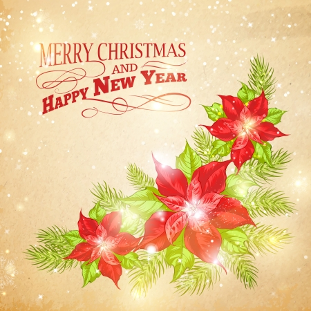 Christmas card with poinsettia christmas star. Vector illustration. Vector
