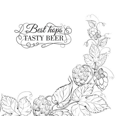 Decorative hops cover design. Vector illustration. Vector