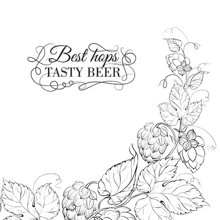 hop cone: Decorative hops cover design. Vector illustration. Illustration