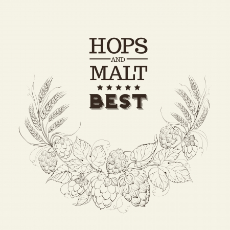 Decorative hops cover design. Vector illustration. Vector
