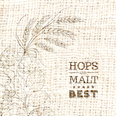 Decorative hops vector illustration border Vector