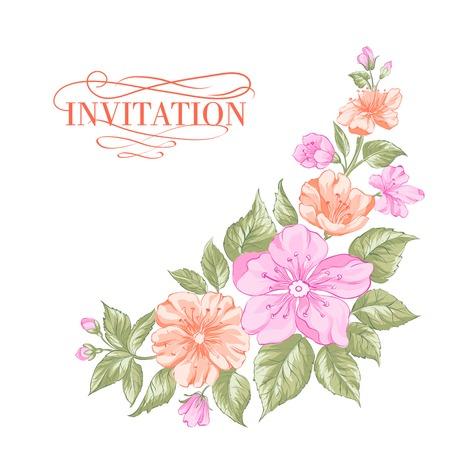 taffy: Sakura holiday invitation card.  Illustration