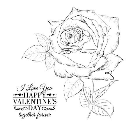 Bonne vacances valntines carte avec une seule rose. Vector illustration. Banque d'images - 25026096