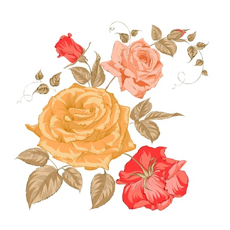 Bouquet of roses. Vector illustration. Vector