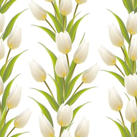Tulip, floral background, seamless pattern. Vector illustration. Vector