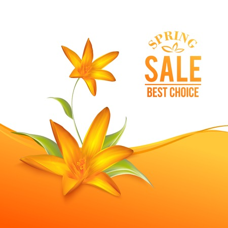 Crocus spring flowers bouquet for your card design. Vector illustration. Vector